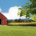 New Hampshire Barnyard by Fred Larson
