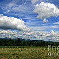 New Hampshire Blue Sky  by Neal Eslinger