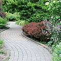 Frelinghuysen Arboretum Path by Richard Bryce and Family
