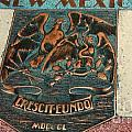 New Mexico Crescit Eundo by Lisa Byrne