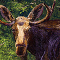Loose Moose by Mary Giacomini