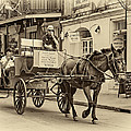 New Orleans - Carriage Ride Sepia by Steve Harrington