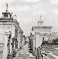 New Orleans: Cemetery by Granger