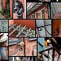 New Orleans Collage 2 by Carol Groenen