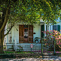 New Orleans Home 8 by Steve Harrington