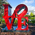 New Orleans Love by Steve Harrington
