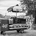 New Orleans - Lucky Dogs Bw by Steve Harrington