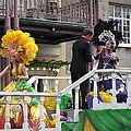 New Orleans - Mardi Gras Parades - 1212121 by DC Photographer