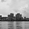 New Orleans by Paul Wilford