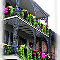 New Orleans Porches by Joan  Minchak