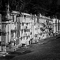 New Orleans St Louis Cemetery No 3 by Christine Till