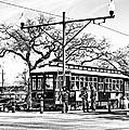 New Orleans Streetcar Silhouette by Steve Harrington