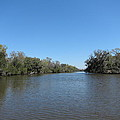 New Orleans - Swamp Boat Ride - 1212154 by DC Photographer