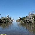New Orleans - Swamp Boat Ride - 121243 by DC Photographer