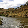 New Photographic Art Print For Sale Banks Of The Rio Grande New Mexico by Toula Mavridou-Messer