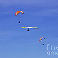 New Photographic Art Print For Sale Hanggliding 12 by Toula Mavridou-Messer
