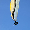 New Photographic Art Print For Sale Hanggliding 4 by Toula Mavridou-Messer