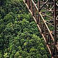New River Gorge Bridge Steel by Douglas MILLER
