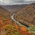 New River Gorge Overlook Fall Foliage by Adam Jewell