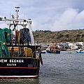 New Seeker - Lyme Regis by Susie Peek