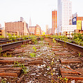 New York City - Abandoned Railroad Tracks by Vivienne Gucwa