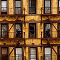 New York City Apartment Building Study by Amy Cicconi