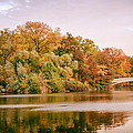 New York City - Autumn - Central Park - Lake And Bow Bridge by Vivienne Gucwa
