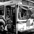 New York City Bus by Miriam Danar