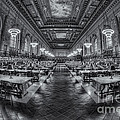 New York Public Library Main Reading Room Viii by Clarence Holmes