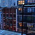 New York Window - Fire Escape In Winter by Miriam Danar
