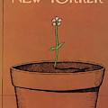 New Yorker April 4th, 1977 by Robert Tallon