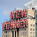 New Yorker by Ed Weidman