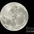 New Zealand Moon by Jennie Breeze