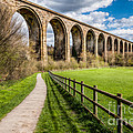 Newbridge Rail Viaduct by Adrian Evans