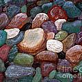 Newfoundland Beach Rocks 2  by Barbara Griffin