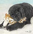 Newfoundland Dog In Snow Stuffed Animal Cathy Peek Art by Cathy Peek