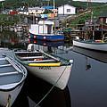 Newfoundland Outport by Susan  Degginger