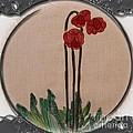 Newfoundland Pitcher Plant - Porthole Vignette by Barbara Griffin