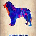 Newfoundland Poster by Naxart Studio