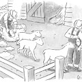 Newly-shorn Sheep Walk Out Of A Barn by Robert Leighton