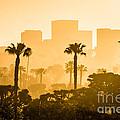 Newport Beach Skyline Morning Sunrise Picture by Paul Velgos