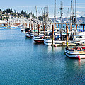 Newport Fishing Fleet  by John Trax