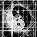 Nexus Prime by Steven Murphy