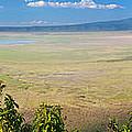 Ngorongoro Crater In Tanzania Africa by Michal Bednarek