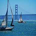 Nice Day On The Bay by Eric Tressler