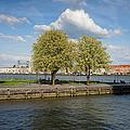 Nieuwe Maas River Waterfront In Rotterdam by Artur Bogacki