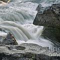 Nigel Creek Cascades by Vivian Christopher