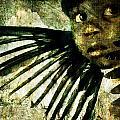 Night Angel by Nada Meeks
