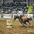 Night At The Rodeo V25 by Douglas Barnard