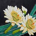 Night Blooming Cactus by Carol Sabo